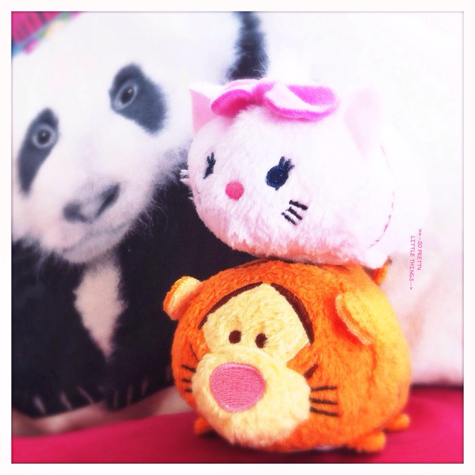 tsum tsum marie et tigrou